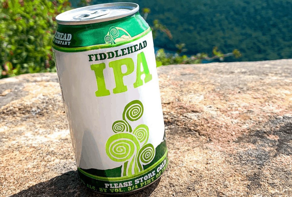Fiddlehead IPA Review