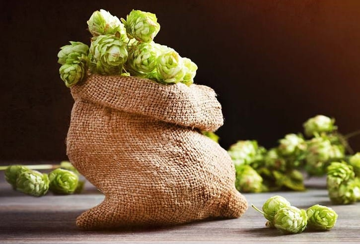 Loral Hops