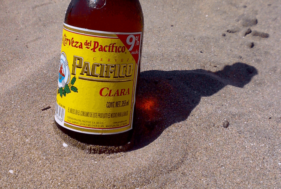 Pacifico Beer Review