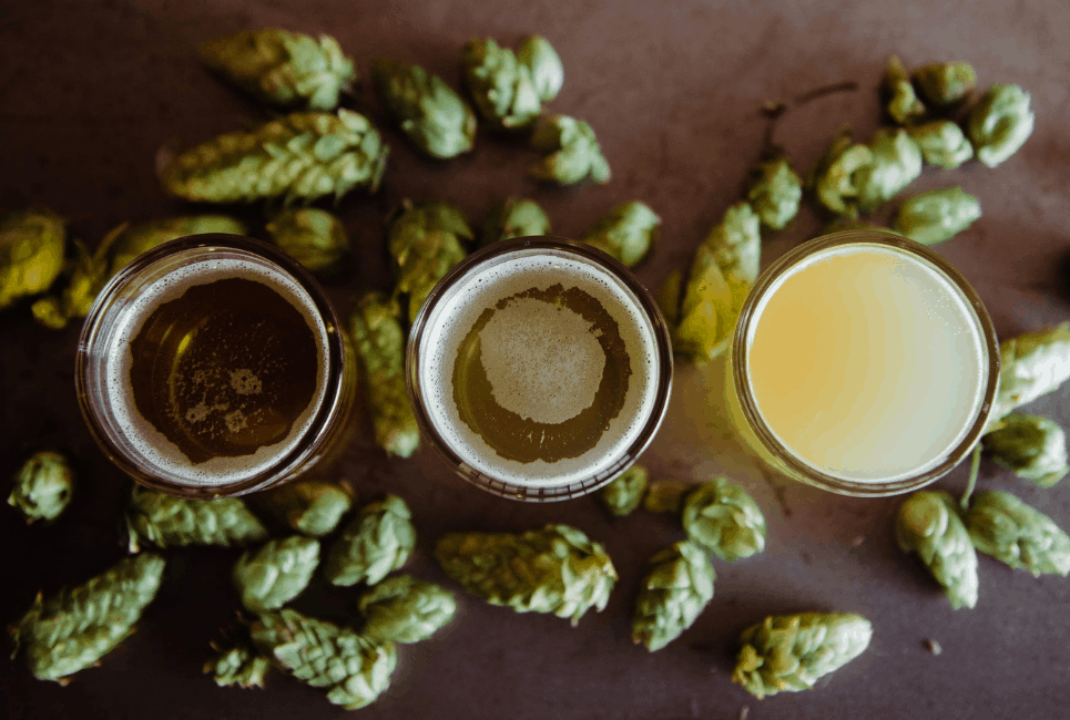 Types of Hops