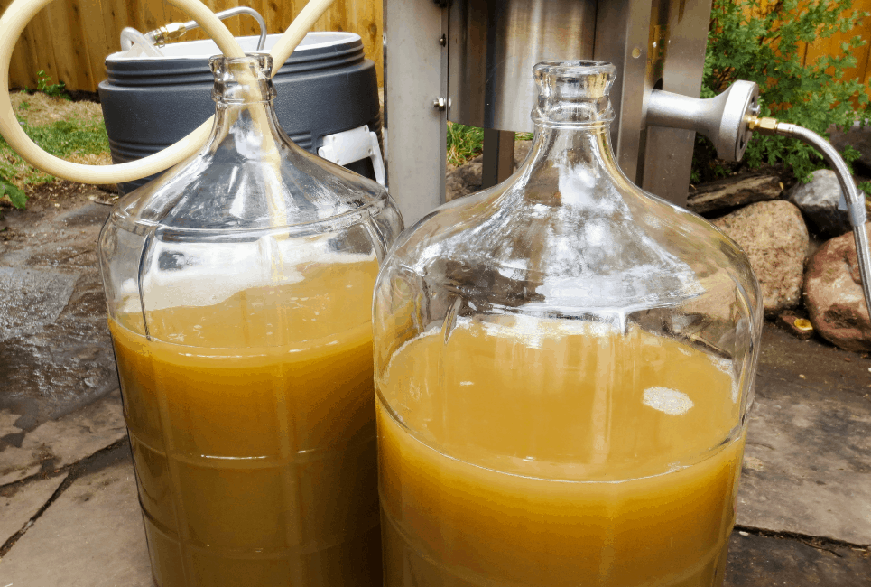 Best Gallon Glass Carboy for Brewing